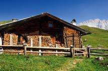 Sommerurlaub im Auhof